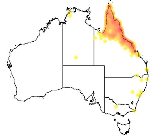 distribution map showing range of Lichenostomus flavus in Australia