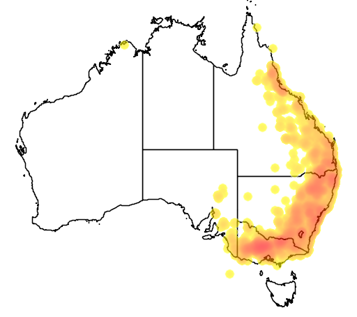 distribution map showing range of Lichenostomus fuscus in Australia