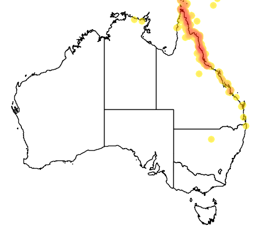 distribution map showing range of Lichenostomus versicolor in Australia