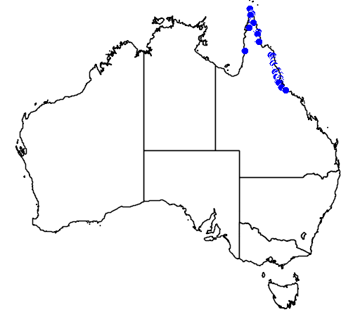 distribution map showing range of Licuala ramsayi in Australia