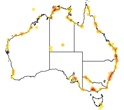 distribution map showing range of Limicola falcinellus in Australia
