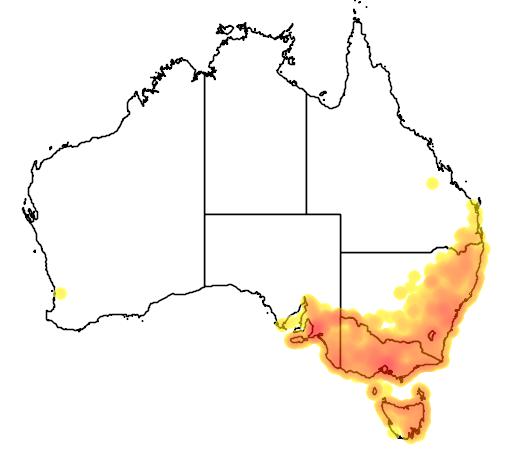 distribution map showing range of Limnodynastes dumerili in Australia