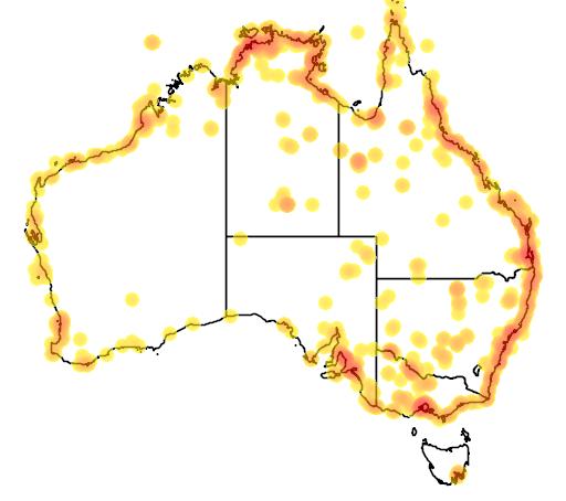 distribution map showing range of Limosa limosa in Australia