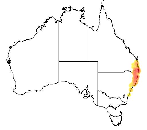 distribution map showing range of Linospadix monostachya in Australia