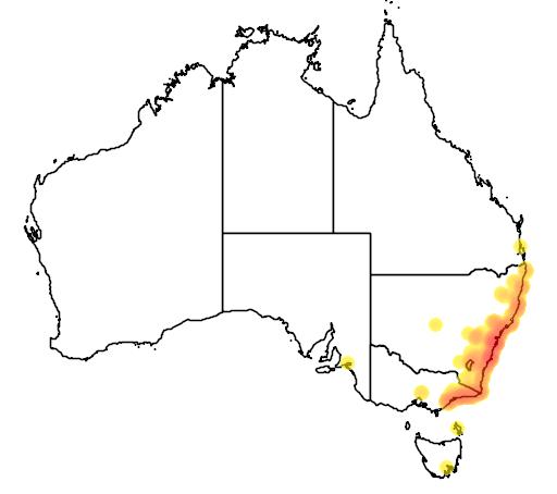 distribution map showing range of Litoria aurea in Australia
