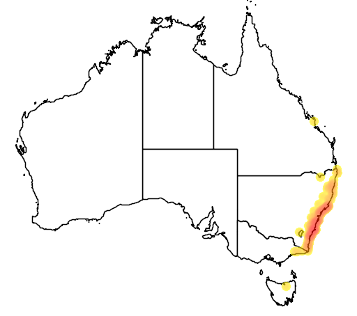 distribution map showing range of Litoria jervisiensis in Australia
