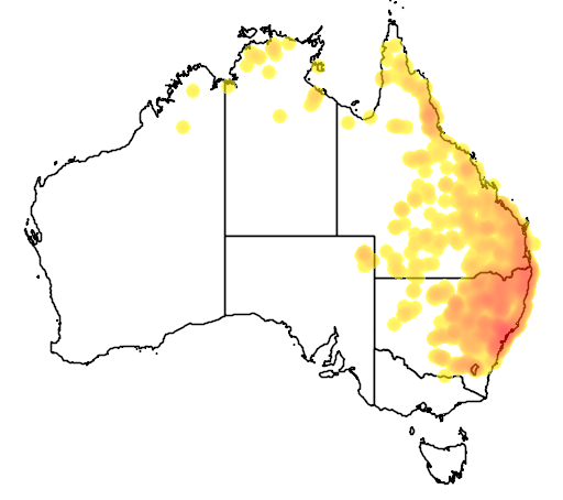 distribution map showing range of Litoria latopalmata in Australia