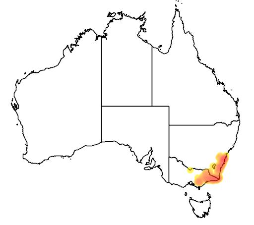 distribution map showing range of Litoria nudidigita in Australia