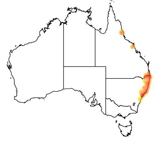 distribution map showing range of Litoria revelata in Australia