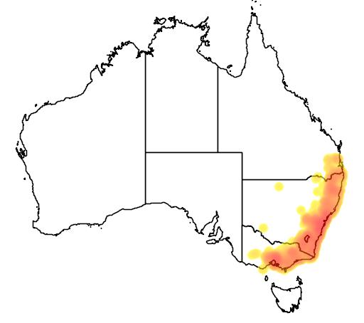 distribution map showing range of Litoria verreauxi in Australia