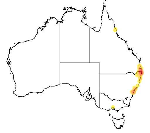 distribution map showing range of Macadamia tetraphylla in Australia