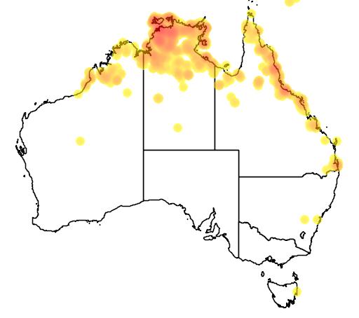 distribution map showing range of Macropus agilis in Australia