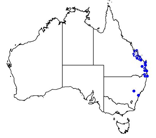 distribution map showing range of Macrozamia miquelii in Australia