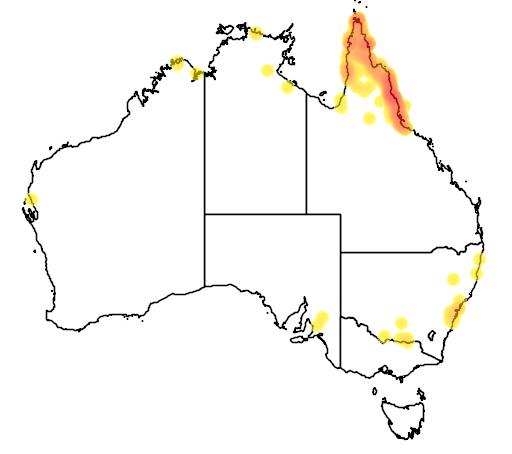 distribution map showing range of Malurus amabilis in Australia