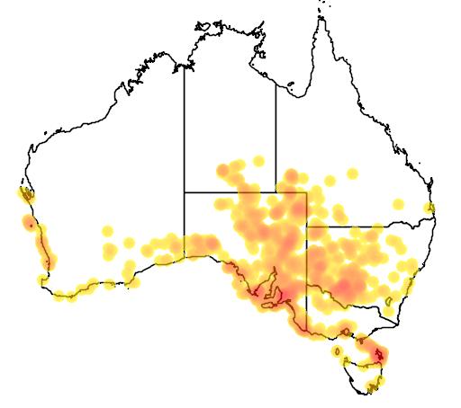 distribution map showing range of Malva preissiana in Australia