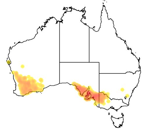 distribution map showing range of Melaleuca acuminata in Australia