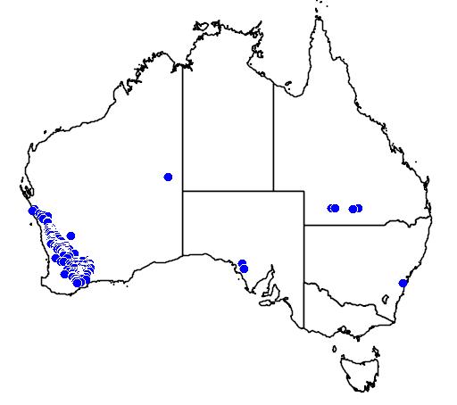 distribution map showing range of Melaleuca adnata in Australia