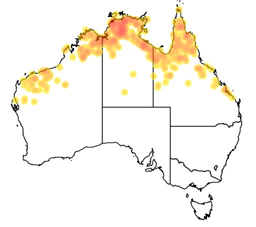 distribution map showing range of Melaleuca argentea in Australia
