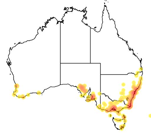 distribution map showing range of Melaleuca armillaris in Australia