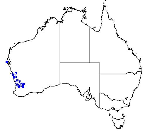 distribution map showing range of Melaleuca aspalathoides in Australia
