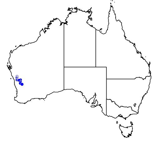 distribution map showing range of Melaleuca barlowii in Australia