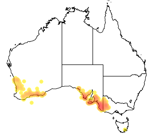 distribution map showing range of Melaleuca brevifolia in Australia