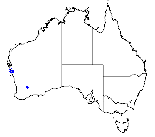 distribution map showing range of Melaleuca calothamnoides in Australia