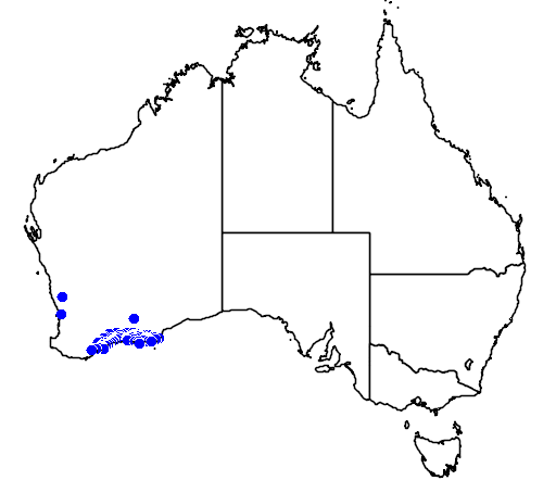 distribution map showing range of Melaleuca calycina in Australia