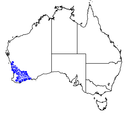 distribution map showing range of Melaleuca carrii in Australia