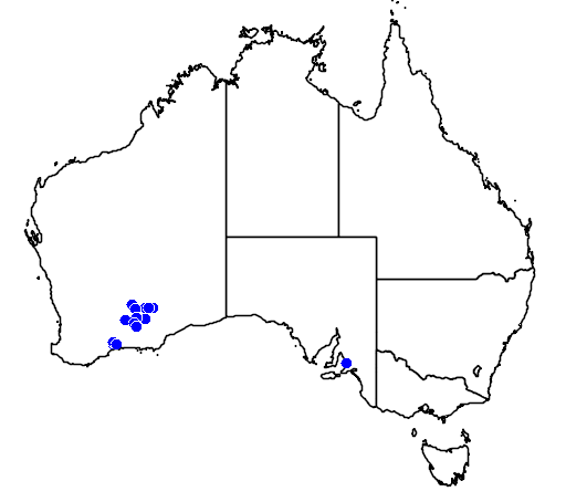 distribution map showing range of Melaleuca coccinea in Australia