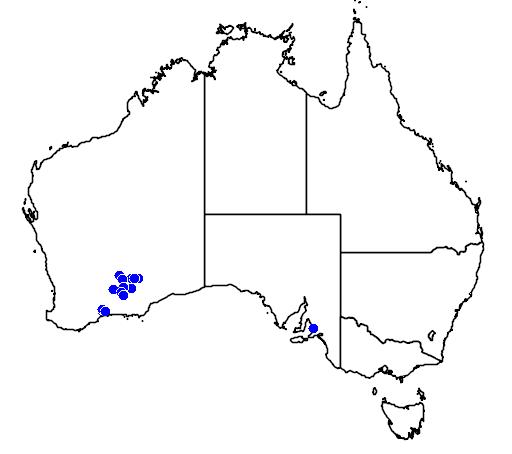 distribution map showing range of Melaleuca coccinea in Australia