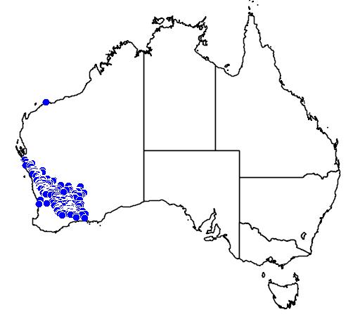 distribution map showing range of Melaleuca cordata in Australia
