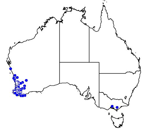 distribution map showing range of Melaleuca lateritia in Australia