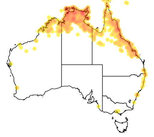distribution map showing range of Melaleuca leucadendra in Australia