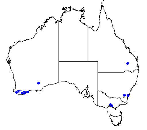 distribution map showing range of Melaleuca micromera in Australia