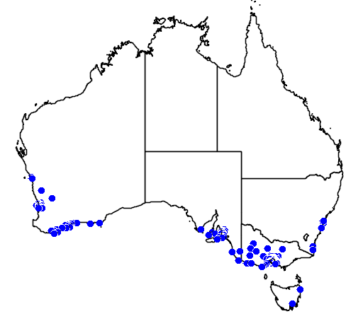 distribution map showing range of Melaleuca nesophila in Australia