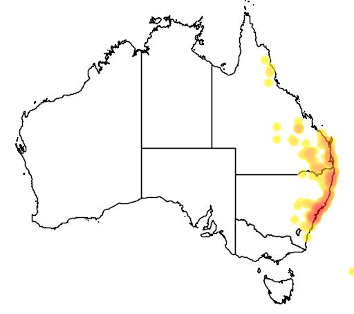 distribution map showing range of Melaleuca nodosa in Australia