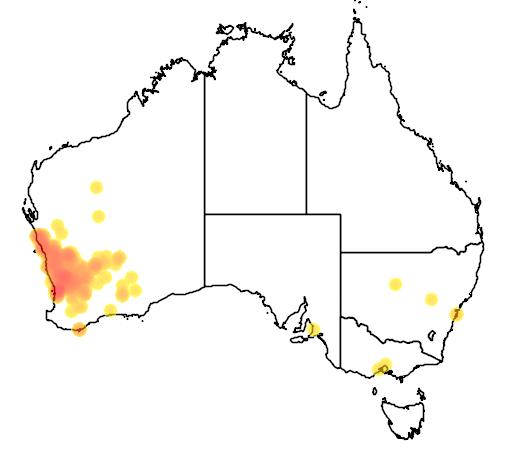 distribution map showing range of Melaleuca radula in Australia