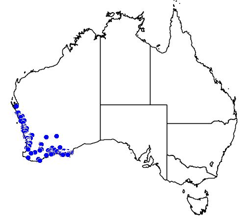 distribution map showing range of Melaleuca scabra in Australia