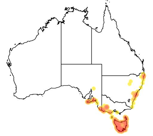 distribution map showing range of Melaleuca squamea in Australia