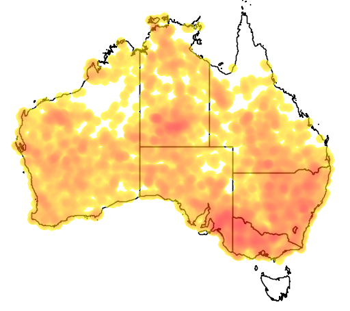 distribution map showing range of Melanodryas cucullata in Australia