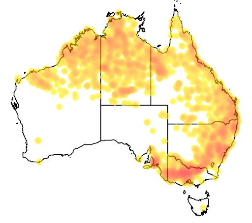distribution map showing range of Melithreptus gularis in Australia