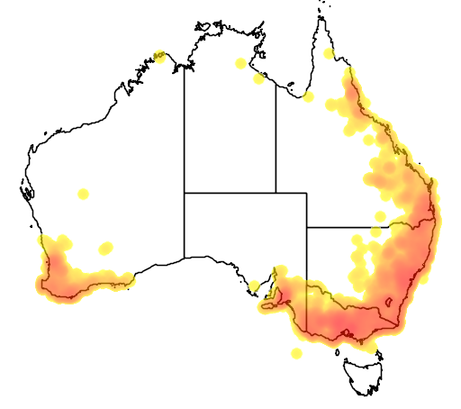 distribution map showing range of Melithreptus lunatus in Australia