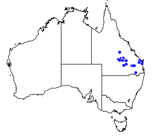 distribution map showing range of Micromyrtus leptocalyx in Australia