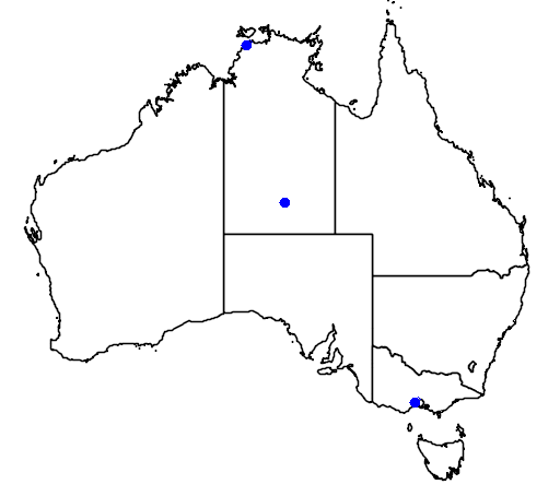 distribution map showing range of Micropalama himantopus in Australia