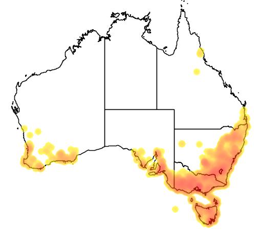 distribution map showing range of Microtis unifolia in Australia