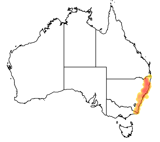 distribution map showing range of Mixophyes balbus in Australia