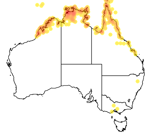 distribution map showing range of Myiagra ruficollis in Australia