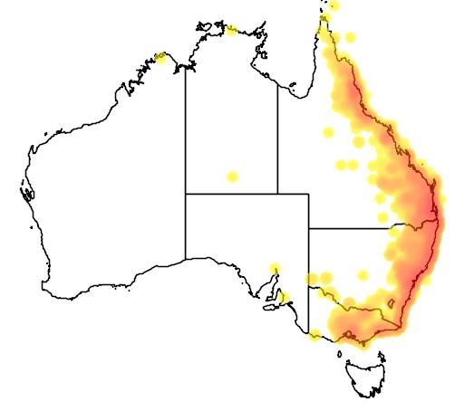 distribution map showing range of Myzomela sanguinolenta in Australia