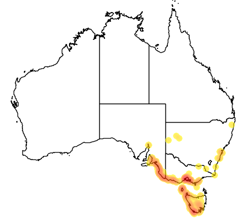 distribution map showing range of Neophema chrysogaster in Australia